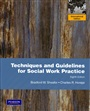 Techniques and Guidelines for Social Work Practice:International Edition - Bradford Sheafor - 9780205726653