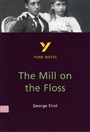 The Mill on the Floss - Nicola Griffin - 9780582381926 - York Notes (67)