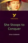 She Stoops to Conquer - Cathi Allison - 9780582381995 - Literature & Culture   - Literature (91)