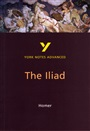 The Iliad: York Notes Advanced